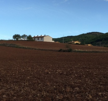 Fertile field in the Basque country.
