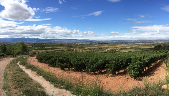 Rioja wine region.